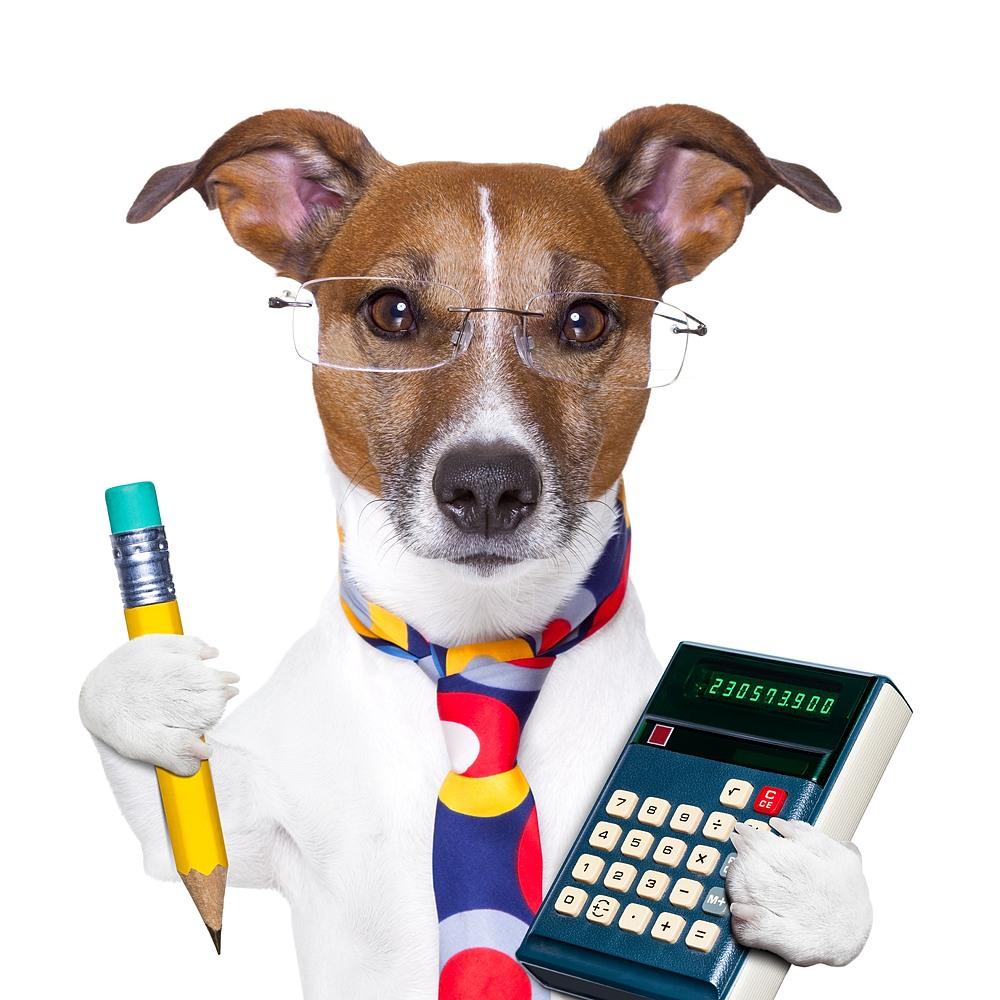 Beitragsberechnung Hund